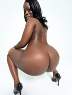 Big black rumps and dream about Ebony honeys and shaking their huge rumps in your face and on your ramrod